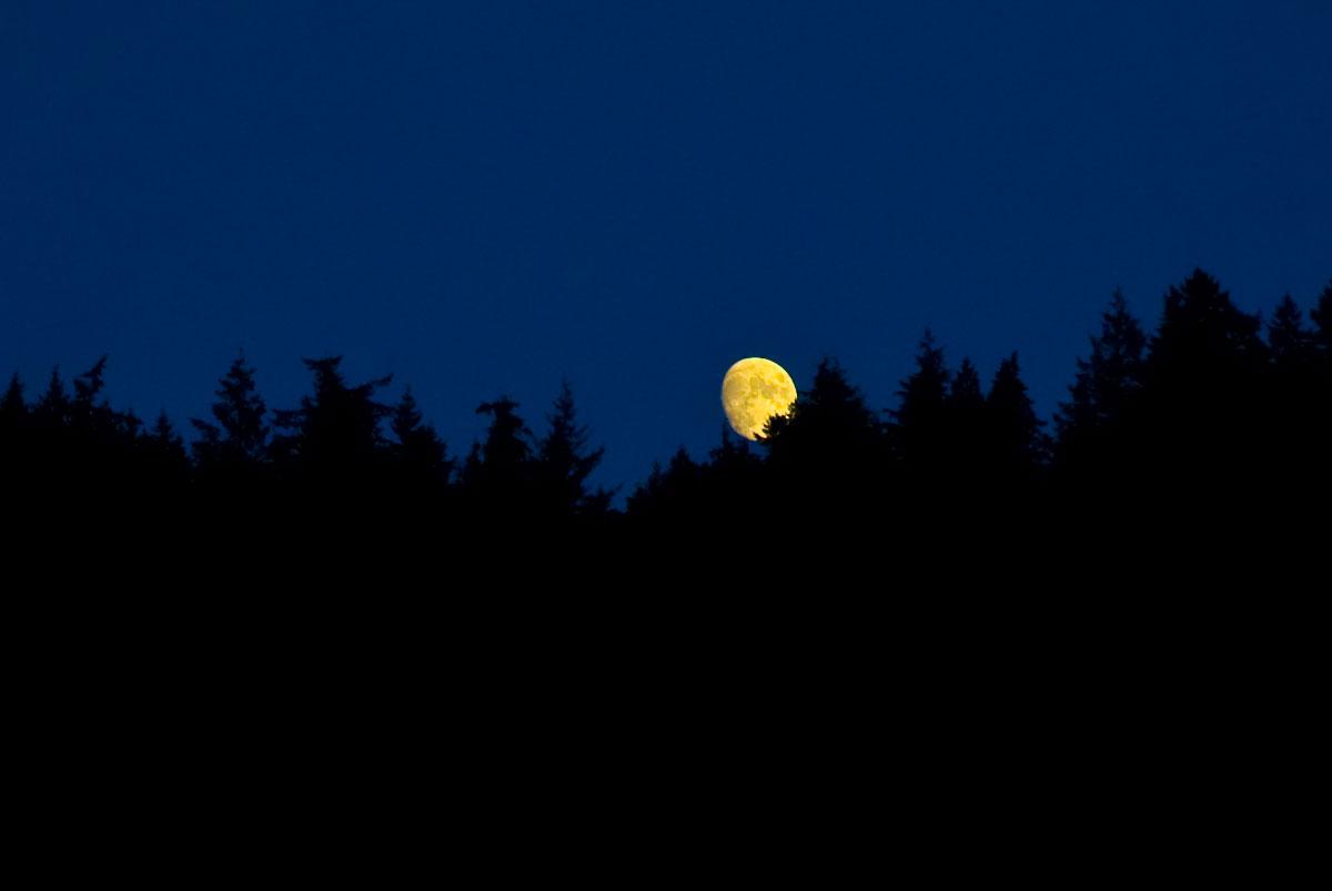 20090704_moon